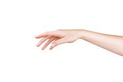 La main de la femme de plan rapproché Photos stock