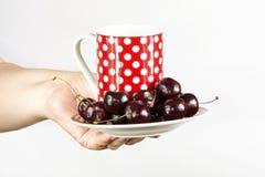 La main de la femme tenant une tasse et soucoupe Images stock