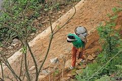 La main de transport de jeune garçon a tissé le panier complètement des pierres en bas du MOIS Photos stock