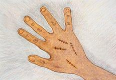 La main droite tirée par la main avec la suture chirurgicale de blessure par couleur en bois crayonne sur le fond de livre blanc  photographie stock
