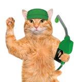 La main du chat utilisant le gicleur d'essence avec une baisse de carburant qui respecte l'environnement Images stock