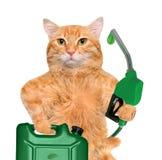 La main du chat utilisant le gicleur d'essence avec une baisse de carburant qui respecte l'environnement Photographie stock
