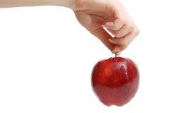 La main du femme retenant la pomme rouge Photos libres de droits