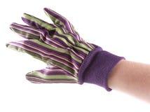 La main enfilée de gants du jardinier image stock