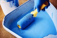La main enfil?e de gants abaisse le rouleau dans le plateau avec la peinture bleue Peintre de services R?paration et d?coration d images libres de droits