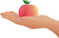 La main et la pomme. illustration de vecteur
