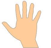 La main humaine est protégée Image libre de droits
