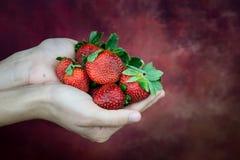 La main portent beaucoup la fraise images libres de droits