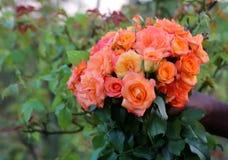 La main tenant le bouquet de a monté Image stock