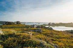 La maison au milieu des fleurs au bord de mer Images libres de droits