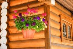 La maison de campagne avec Windows a fait du bois de charpente stratifié de placage Temps chaud d'été Fleurs dans un bac photo libre de droits