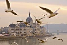 La maison du bâtiment du parlement par temps brumeux, Budapest Photographie stock libre de droits