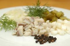 La maison a effectué la salade d'harengs Image stock