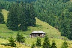 La maison en bois de vintage des bergers en montagnes avec la forêt conifére photographie stock libre de droits