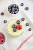 La maison a fait le pudding de vanille Photo stock