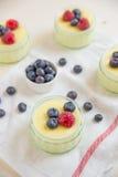 La maison a fait le pudding de vanille Image libre de droits