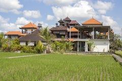 La maison tropicale avec un toit carrelé parmi le riz met en place Bali, Ubud, Indonésie photographie stock libre de droits