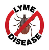 La maladie de Lyme Tick Bite Icon Photos stock