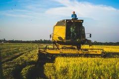 La Malaisie Paddy Harvesting Machine et travailleurs photographie stock