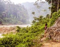 La Malesia - ragazzo in Taman Negara fotografia stock libera da diritti