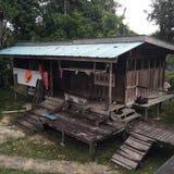 La Malesia, Sarawak Immagini Stock Libere da Diritti