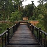 La Malesia, Sarawak Immagini Stock
