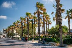 La Malvarrosa beach promenade in Valencia, Spain. Valencia, Spain - June 2, 2017: Walking path on sunny day under palm trees. La Malvarrosa beach promenade in Royalty Free Stock Photo