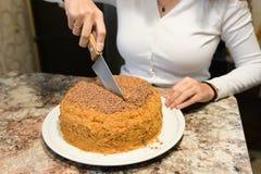 La mamá corta y sirve un pedazo de torta recientemente cocida, que él acaban de hacer en casa La muchacha coció una torta y la co imagen de archivo