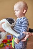 La mamá introduce el gato con su hijo, el muchacho tiene miedo del animal imagenes de archivo