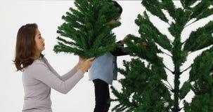 La mamá y el hijo asiáticos hicieron el árbol de navidad almacen de video