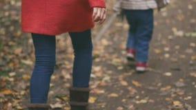 La mamá y el niño están corriendo alrededor y están jugando en el parque del otoño Caminata del otoño en el parque almacen de video
