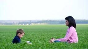 La mamá y el niño se están sentando en la hierba verde y están jugando con la bola almacen de video