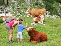 La mamá y el niño disfrutan de la naturaleza de la montaña en la estación de verano Fotos de archivo