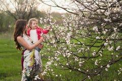 La maman étreint la fille de baisers dans le jardin luxuriant de ressort Photos stock