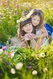 La maman et la fille sur un pique-nique dans la camomille mettent en place Deux belles blondes dans la camomille mettent en place Photo libre de droits