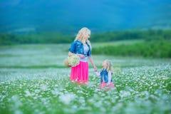 La maman et la fille sur un pique-nique dans la camomille mettent en place Deux belles blondes portant la veste de jeans et le gi Photos stock