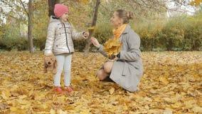 La maman et le bébé rassemblent les feuilles tombées par jaune en parc Photo stock
