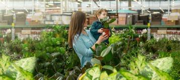 La maman et son b?b? gar?on dans des usines font des emplettes choisissent des usines Jardinage en serre chaude photo libre de droits