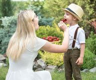 La maman incite le fils à manger de petites fraises parfumées mûres images libres de droits