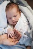 La maman maintient le bébé nouveau-né de main miniature dans les mains Image libre de droits