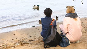 La mamma ed suo figlio prendono le immagini di un'anatra con gli anatroccoli sulla riva del bacino idrico su uno smartphone stock footage