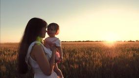 La mamma felice porta la sua piccola figlia nelle sue armi sopra un campo di grano nei bei raggi del tramonto Famiglia felice video d archivio
