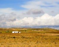 La Mancha de Castilla Imagenes de archivo