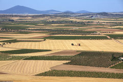 La Mancha Farmland & Vineyards - Spain Royalty Free Stock Photography