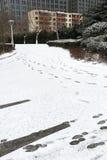 La manera en la nieve Imágenes de archivo libres de regalías