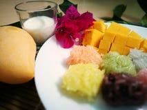 la mangue douce avec du riz collant coloré et le lait de noix de coco bourdonnent Images stock