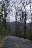 La mani?re en bas de la colline avec des arbres de chaque c?t? images stock
