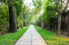 Manière de promenade Image libre de droits