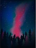 La manière laiteuse au-dessus de la forêt au vecteur de nuit Image stock