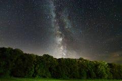 La manière laiteuse au-dessus des arbres Galaxie de manière laiteuse Image libre de droits